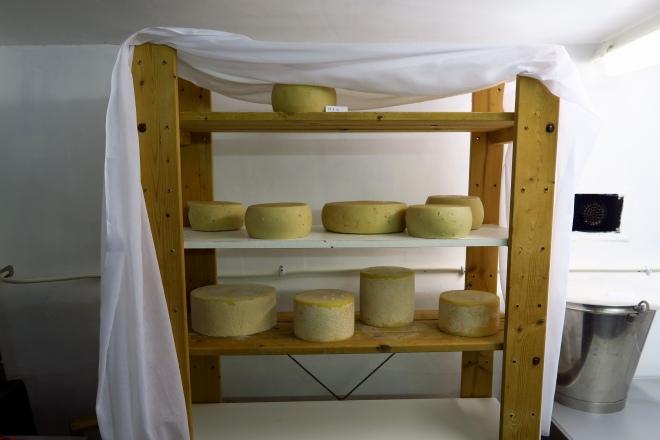 Goats Milk, Cheese, Ardagh Castle Goats Farm, Baltimore, Ireland
